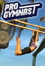职业体操运动员 v1.07中文版